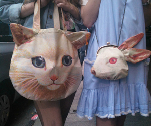 fashion, cat, and bag image