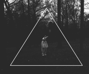 triangle, black and white, and rabbit image
