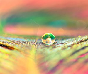 colors and raindrops image