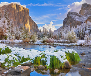landscape, nature, and river image