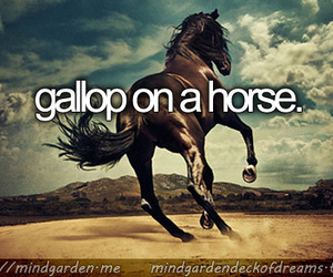before i die, dreams, and gallop image