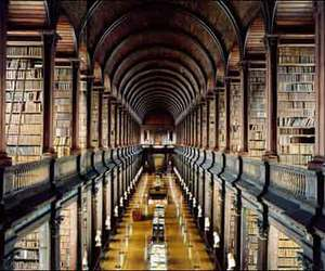 book, library, and library porn image