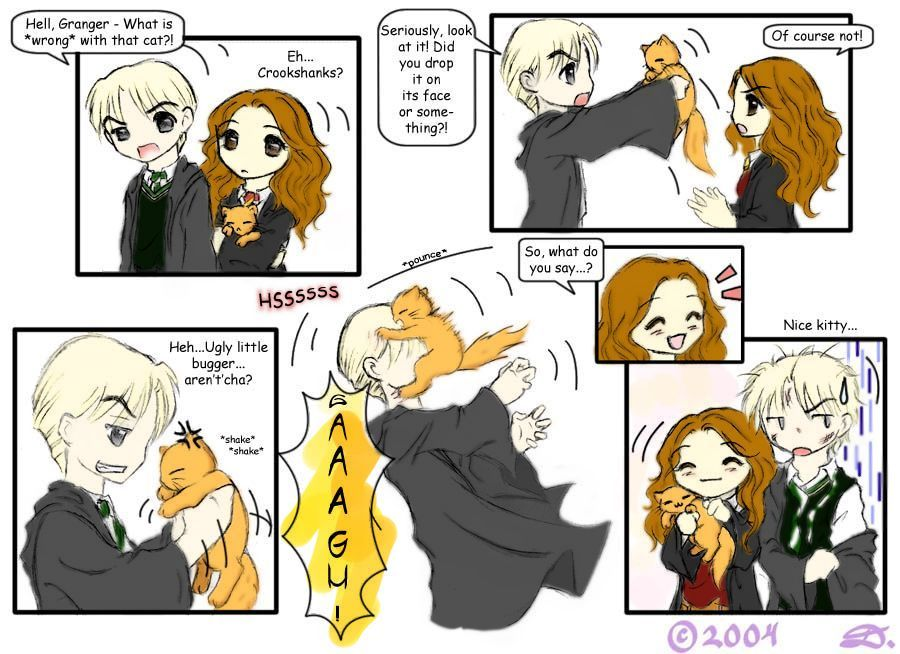 Hermione Granger And Draco Malfoy Fan Art