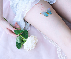 butterfly, pale, and skin image