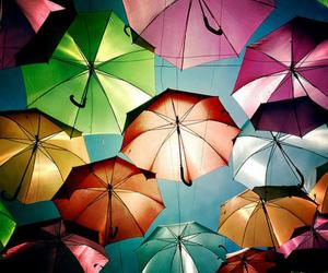 umbrella, colorful, and colors image