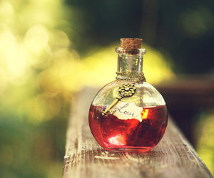 love, red, and potion image