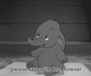 black and white, dumbo, and cute image