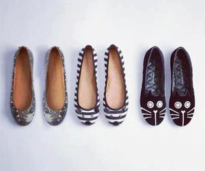 fashion, shoes, and cat image