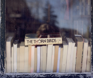 books and the thorn birds image