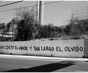 wall and accion poetica image