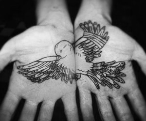 bird, hands, and tattoo image