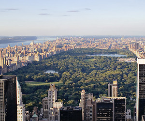 america, central, and Central Park image