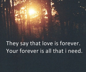 forever, promise, and love image