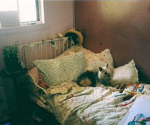 vintage, bed, and dog image