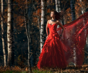 autumn, dress, and red image