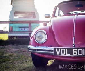 beetle, bug, and buggy image