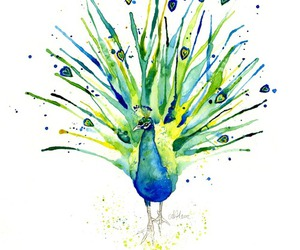 art and peacock image