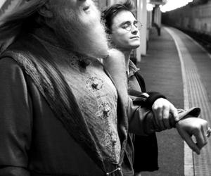dumbledore, harry potter, and wizard image