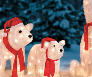 christmas, Polar Bear, and winter image