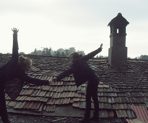 roof and friends image