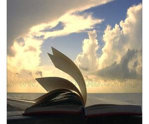 air, book, and read image