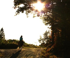autumn, leaves, and riding image