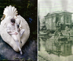 photography, Swan, and tim walker image