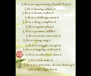 inspiring, life is, and quotes image