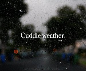 cuddle, typography, and rain image