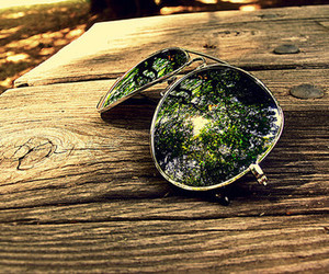 glasses, photography, and tree image