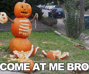 funny, Halloween, and pumpkin image