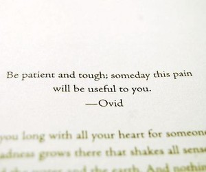 pain, quotes, and ovid image