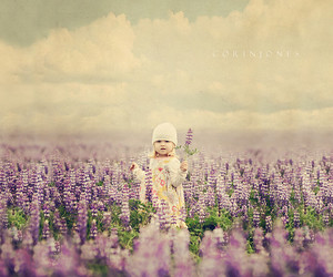 blossoms, flowers, and little girl image