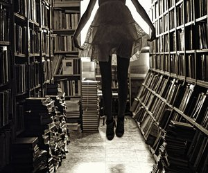 books, fly, and girl image
