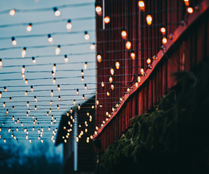 fairy lights and luzes image