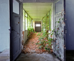 hallway, indoors, and nature image