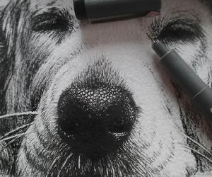 adorable, amazing, and drawing image
