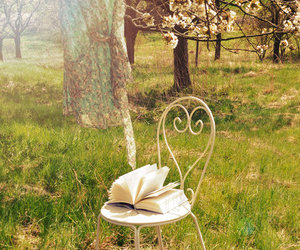book, tumblr, and chair image