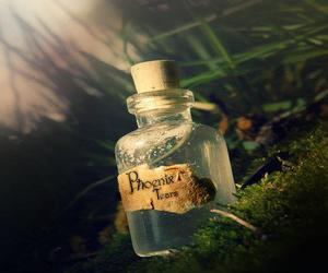 fairytale and phoenix tears image