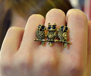 owl, ring, and accessories image
