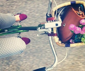 bike, flowers, and loafers image