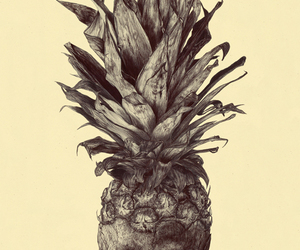 ananas, idea, and picture image
