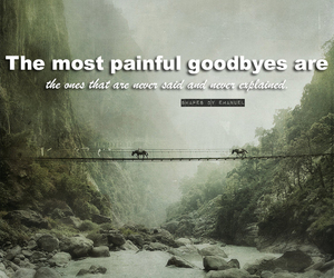 goodbyes, life, and pain image