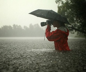 rain, photography, and umbrella image