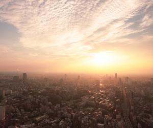 nature, urban, and tokyo image