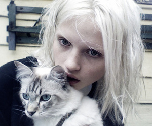 cat, girl, and model image