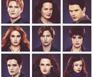 The Cullens and twilight image