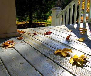 autumn, colour, and porch image