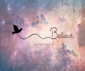 believe, bird, and belive image
