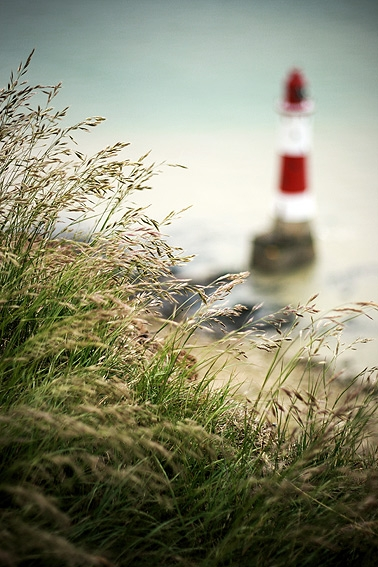 grass and lighthouse image